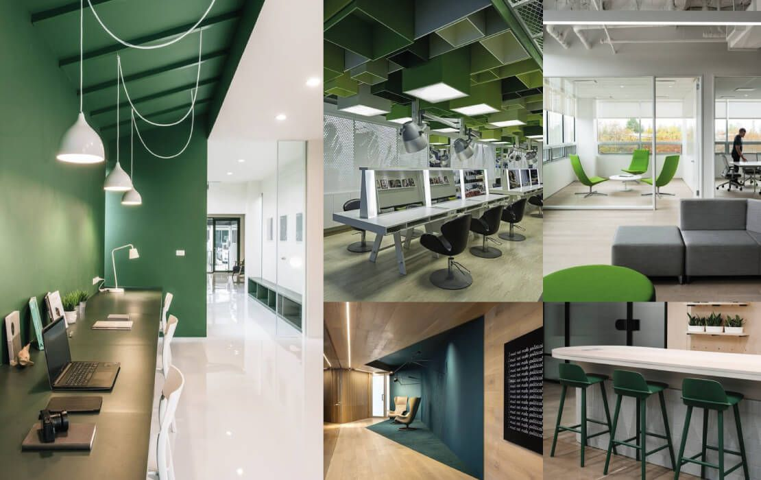 oficinas color verde
